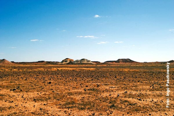Break Aways in der Nähe von Coober Pedy sind auch bekannt als zwei Dingos oder wegen der Färbung als Salz und Pfeffer.