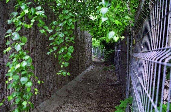 """Vor der """"Restaurierung"""" der Berliner Mauer in der Brunnenstraße / Foto: Ingo Paszkowsky"""