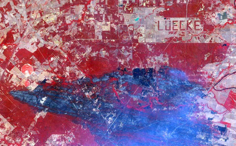 Bastrop in Texas brennt. Die roten Bereiche zeigen gesunde Vegetation, die anderen brennen oder sind breits verbrannt. LUECKE ist übrigens der Name eines ortsansässigen Farmers, der seine Bäume so fällte, dass der Rest den Schriftzug ergibt. Foto: DigitalGlobe