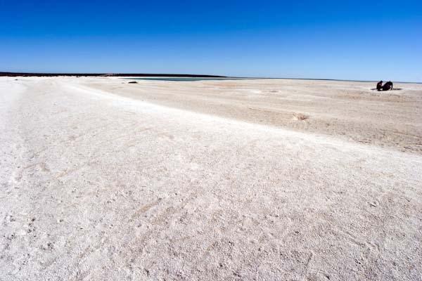 Der Shell Beach ist ein etwa 40 km langer Küstenstreifen an der westaustralischen Shark Bay, der aus einer bis zu 10 Meter dicken Schicht von Herzmuscheln besteht. Hier in der Nähe der Stadt Carnarvon. Ohne Schuhe ist der Strand nicht begehbar. Foto: Ingo Paszkowsky