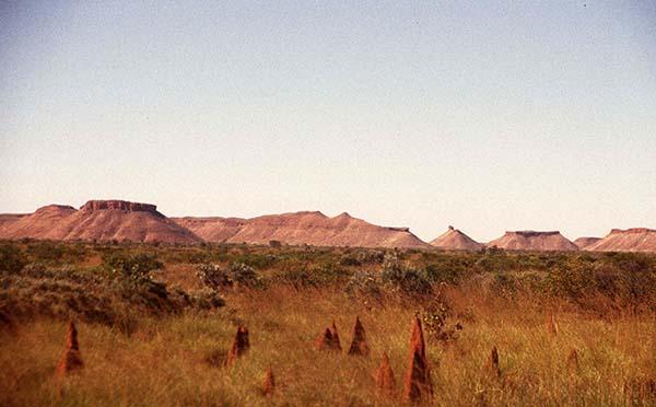 Auch Hügel und Termitenhügel gibt es genug zu bewundern. Foto: Otto Tours