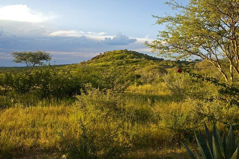 Die Reise Wings over Namibia erschließt den Luxus der Einsamkeit. Mit privatem Kleinflugzeug von Lodge zu Lodge über die grandiose Landschaft und in die entlegenen Regionen, wo vor allem Landschaftserlebnisse dafür sorgen, dass man freier als irgendwo sonst durchatmen und sich in der Weite neu entdecken kann. Foto: Ingo Paszkowsky