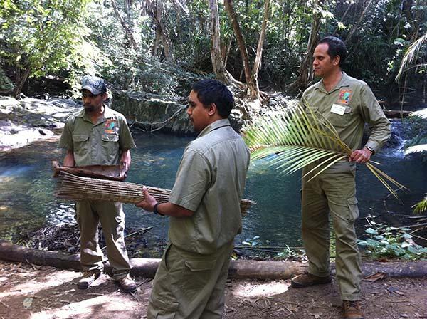 Entwickelt von der Djabugay Native Aboriginal Corporation führen die Ureinwohner durch die Pfade der Regenwälder im tropischen Norden des australischen Bundesstaats. Foto: Tourism Queensland