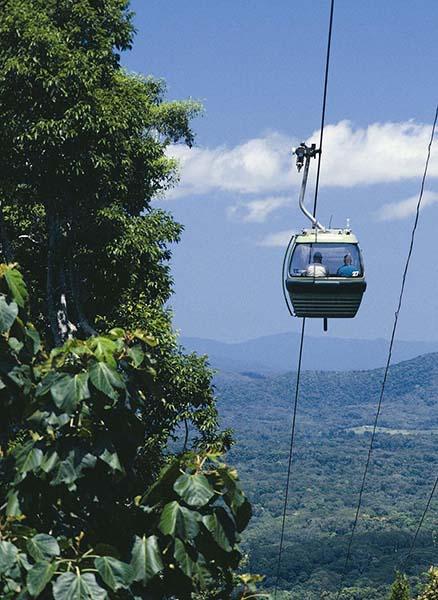 Aus der Skyrail-Gondel erleben Besucher den Regenwald hautnah: Sie gleiten über eine Länge von 7,5 Kilometern über den Wipfeln des Daintree Rainforests, dem ältesten Regenwald der Erde, und genießen dabei atemberaubende Ausblicke. Foto: Tourism Queensland