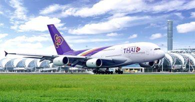 Sitzplatzangebot der Thai Airways-Maschinen von Deutschland nach Thailand