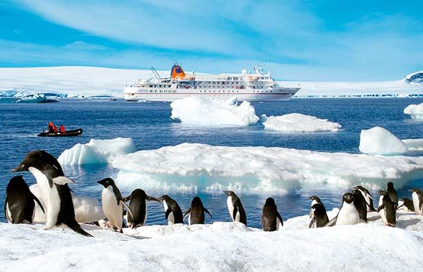 In der Antarktis schauen die Pinguine zu der MS BREMEN hinüber. Auf der Wrangelinsel werden es Eisbären sein. Foto: Hapag-Lloyd Kreuzfahrten