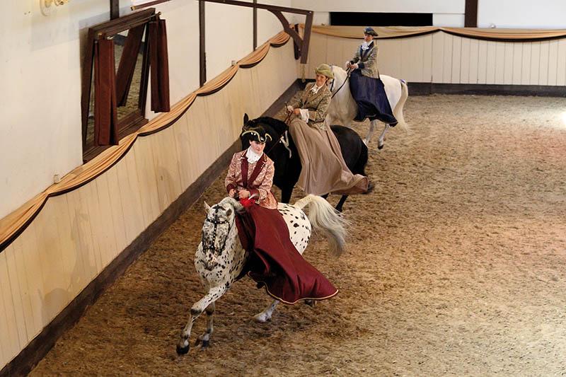 Vorführung im Damensitz. Foto: : Niels Stappenbeck (www.stappenbeck-foto.de)