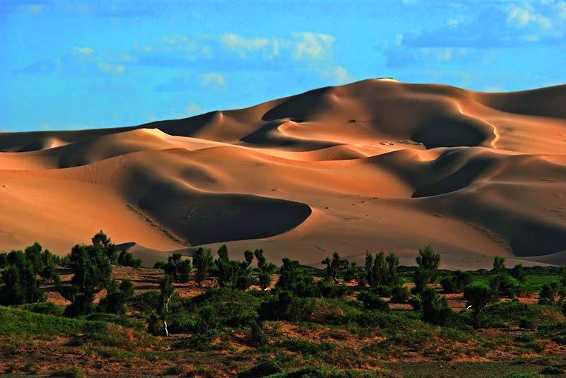 Wanderungen, Kamelritte, ein Besuch der bis zu 180 km langen und 400 km hohen Wanderdünen Khongoryn Els und die im Sonnenuntergang flammenden Felsen von Bayanzag sind einige Highlights der Wüstentour. Foto: Tischler Reisen.