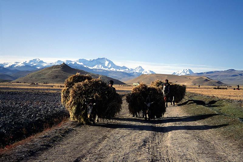Unterwegs mit Nomaden. Foto: CAISSA Touristic / Laurent Vivier
