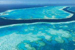 Der Ponton nahe des berühmten Heart Reefs in den Whitsundays bietet eine klimatisierte Doppelkabine sowie zehn Übernachtungsplätze in Swags. Foto: Cruise Whitsundays