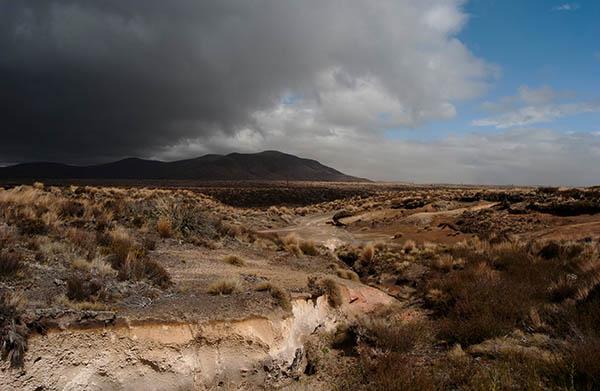Karge Landschaft auf der Nordinsel zur Weihnachtszeit. Foto: Ingo Paszkowsky