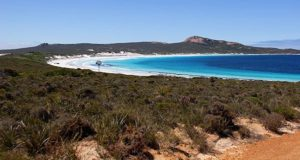 Lucky Bay Cape Le Grand Nationalpark. Foto: Tourism Western Australia