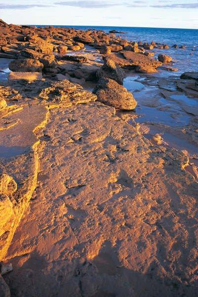 Angeblich soll es sich um um Fußabdrücke von Dinosauriern handeln. Foto: TWA
