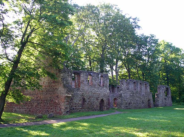 Klosterruine Nimbschen. Foto: Günter Knackfuss