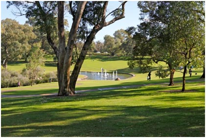 Kings Park in Perth. Foto: Detlef Knoll