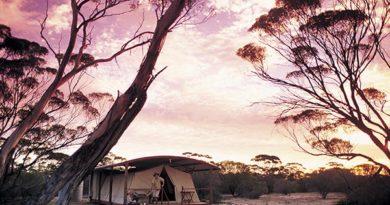 Australien: Outback-Camp auf unberührter Eyre-Halbinsel