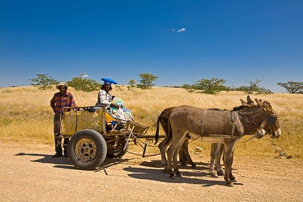 Per Esel-Gespann unterwegs. Auf der Straße C39 in Richtung Westen im Damaraland. Foto: Ingo Paszkowsky