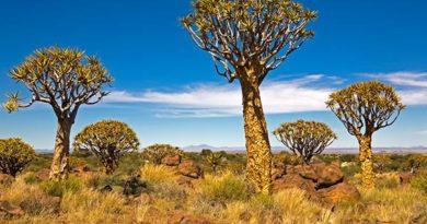 Namibia: Schöne Ansichten – Kalender 2017