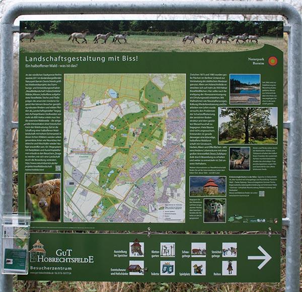 Rieselfeldlandschaft Hobrechtsfelde. Foto: Ingo Paszkowsky