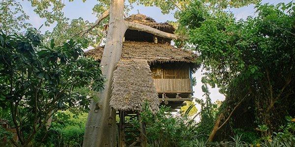 Baumhaus. Chole Mjini ist bestes nachhaltiges Strandhotel 2014. Foto: Green Pearls