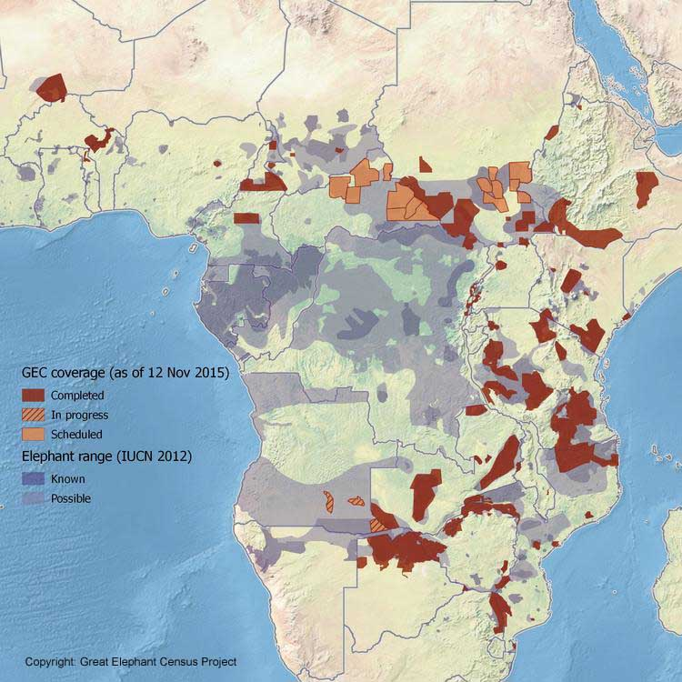 Copyright: Great Elephant Census Project