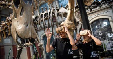 Naturkunde in Virtual Reality erleben