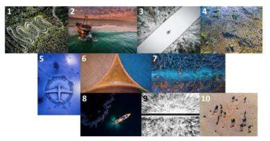 SkyPixel: Wettbewerb für Drohnenfotos