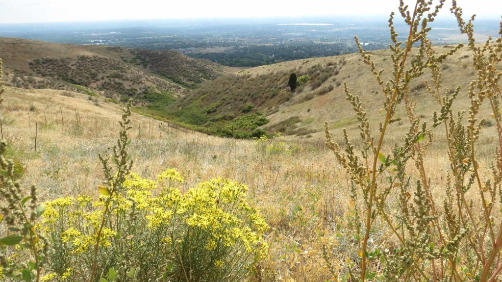 Tipp 2 für Colorado: Wanderung auf dem Hayden Trail. / Foto: WeltReisender.net / Stefanie Gendera