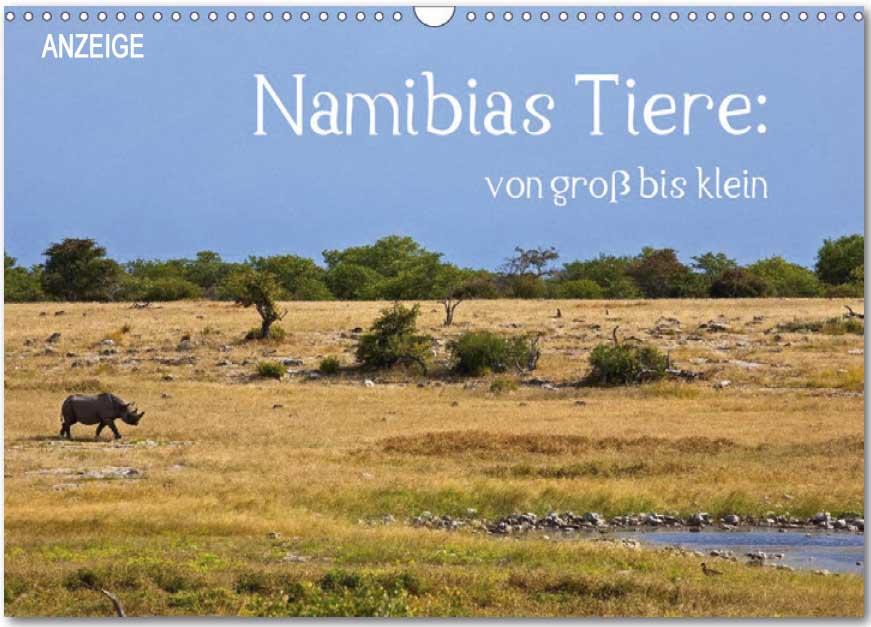 Kalender von WeltReisender.net: Namibias Tiere: von groß bis klein