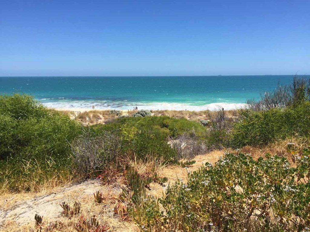 Wilde Strandlandschaft in Cottesloe, Perth. Foto: pixabay / foursummers