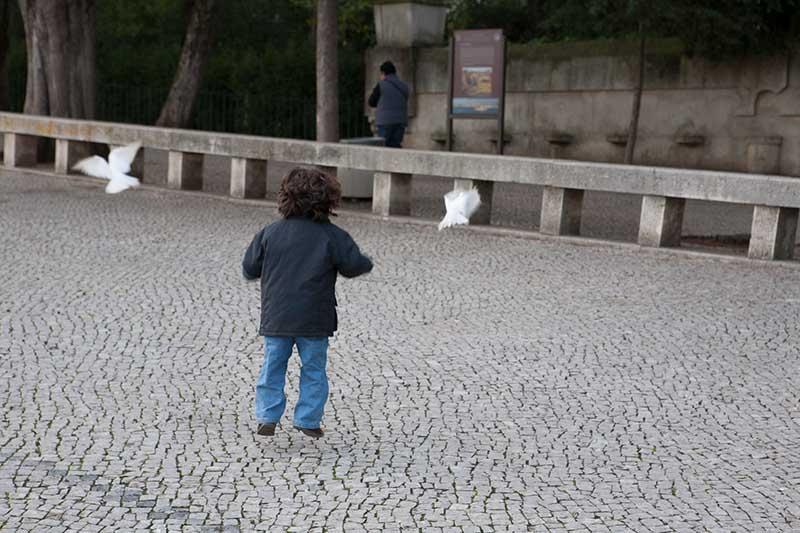 Tauben ärgern macht offensichtlich immer wieder Spaß auch in Fatima. Foto: Ingo Paszkowsky