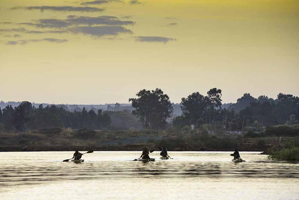 Lake Tana / Copyright Shutterstock / Rene Baars