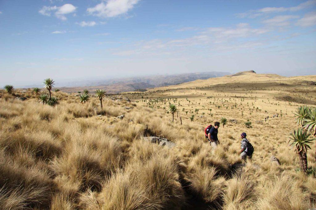 Äthiopien eignet sich auch gut für Trekking-Touren / Foto: pixabay / delmee