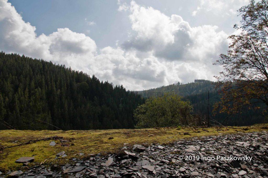GeoPark Schieferland. Die Abraumhalden bieten Lebensraum für schützenswerte Tiere und Pflanzen / Foto: Ingo Paszkowsky