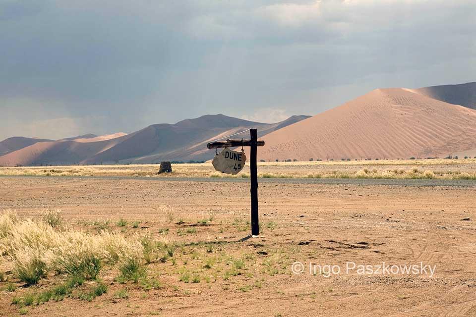 Der Namib Naukluft Park ist eine einzige Dünenlandschaft. Foto: Ingo Paszkowsky