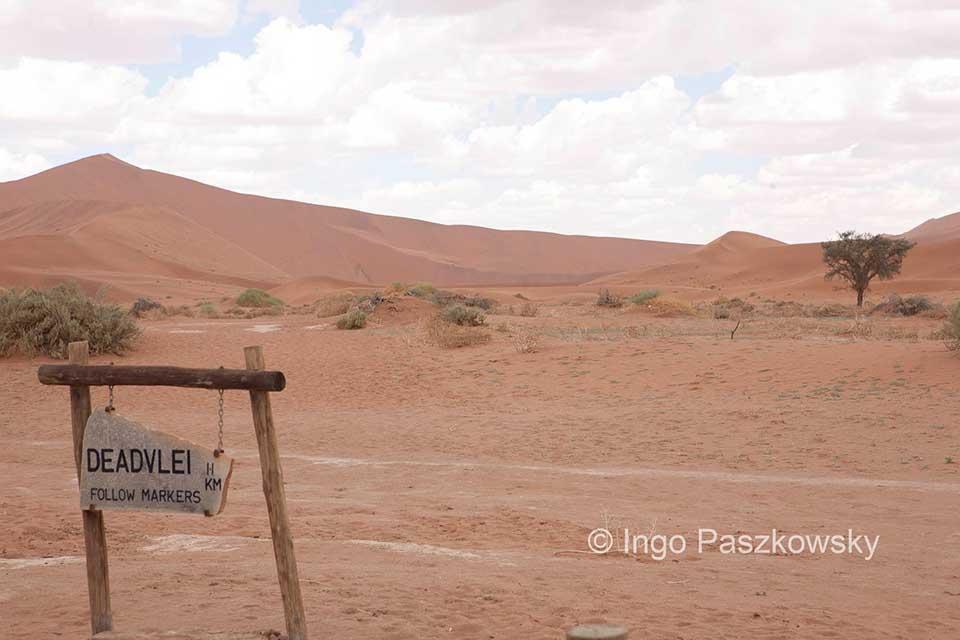 Die vielen Dünen geben dem Namib Naukluft Park sein Gepräge. Foto: Ingo Paszkowsky