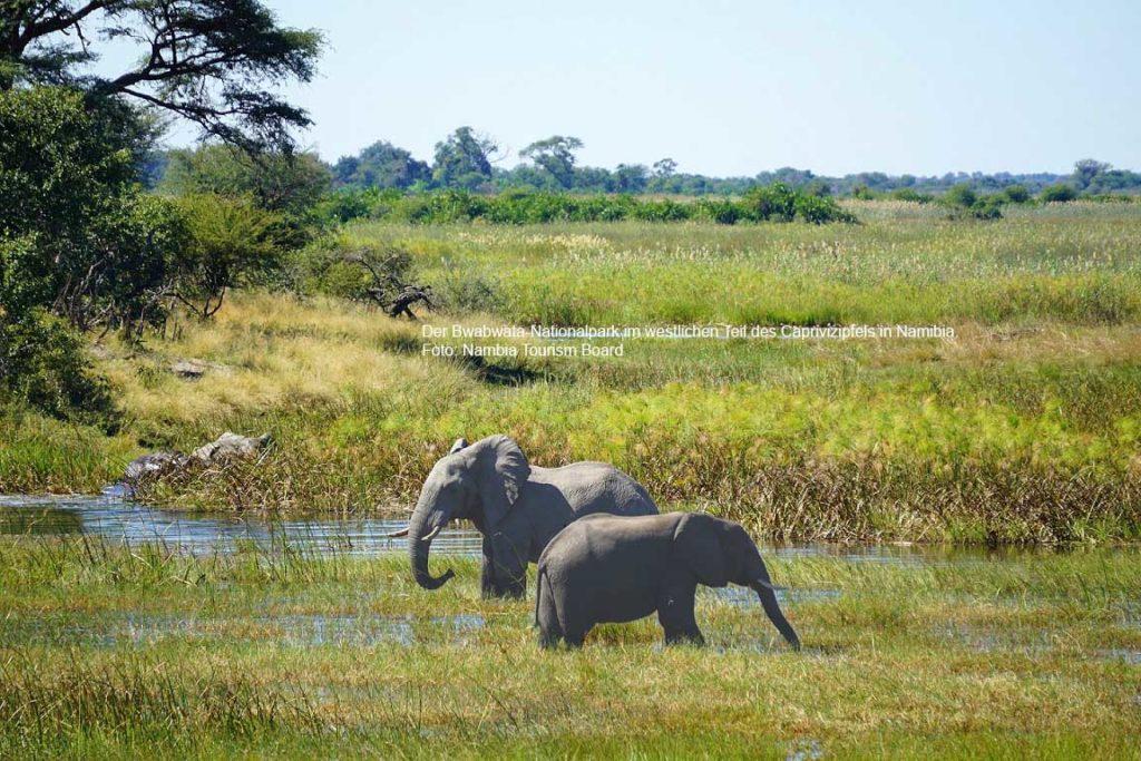Der Bwabwata-Nationalpark im westlichen Teil des Caprivizipfels in Namibia. Foto: Nambia Tourism Board