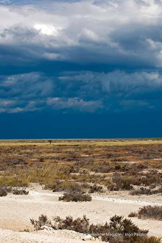 Der Etosha National Park in Namibia / Foto: Ingo Paszkowsky