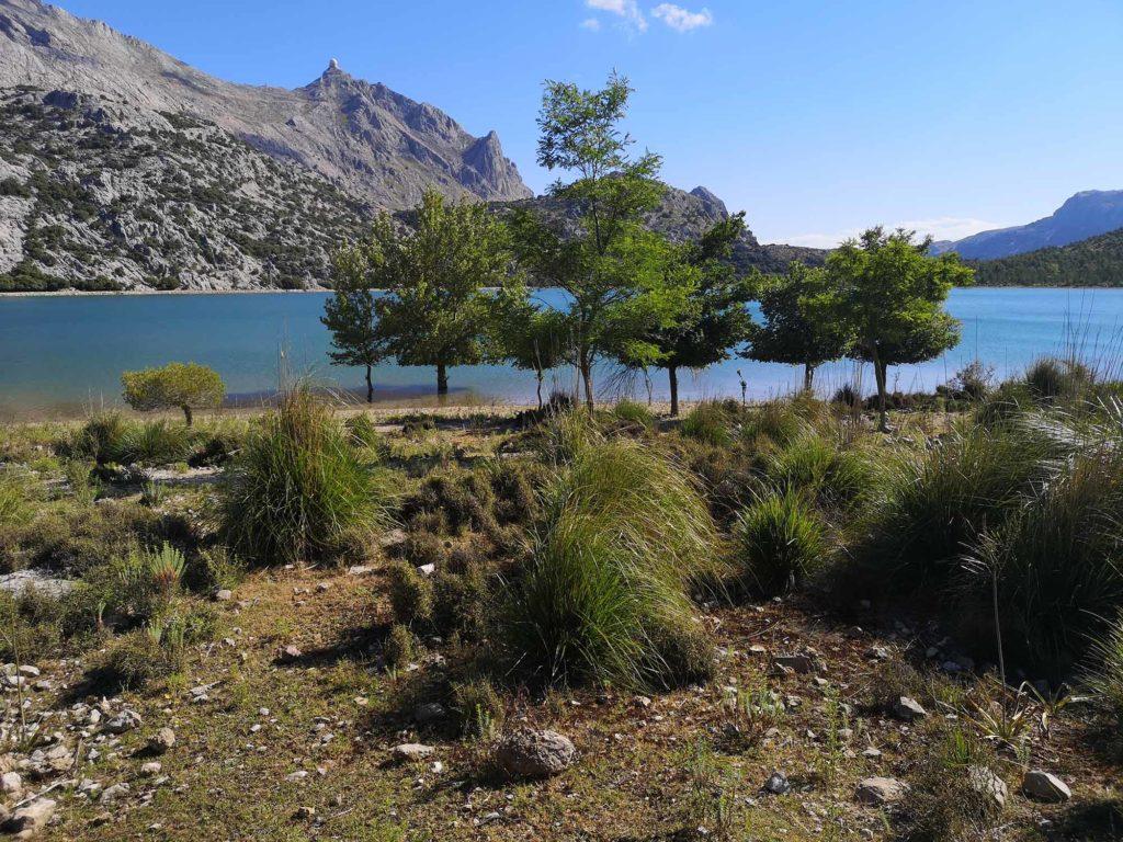 Nach einem regenreichen Winter sind die Seen so gut gefüllt, dass die Uferbäume stellenweise knietief im Wasser stehen. / Foto: WeltReisender.net / Christiane Jonas