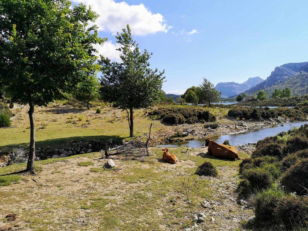 Cuber-Stausee und L'Ofre-Gipfel / Foto: WeltReisender.net / Christiane Jonas