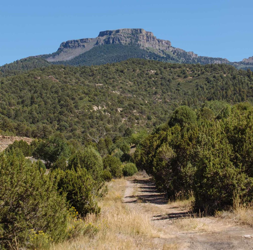 Der Fishers Peak State Park ist der jüngste in Colorado / Copyright Mike Delli Veneri/CPW