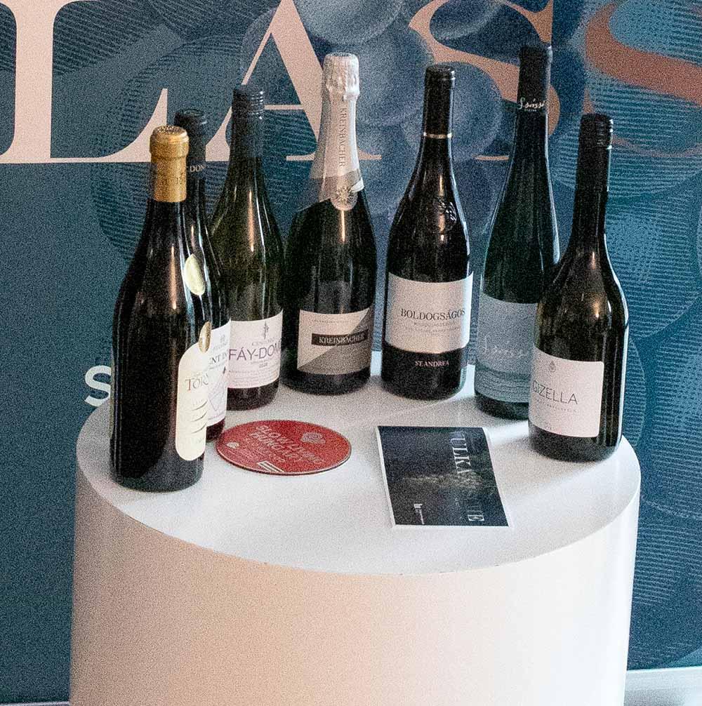 Diese Weine wurden verkostet / Foto: Ingo Paszkowsky
