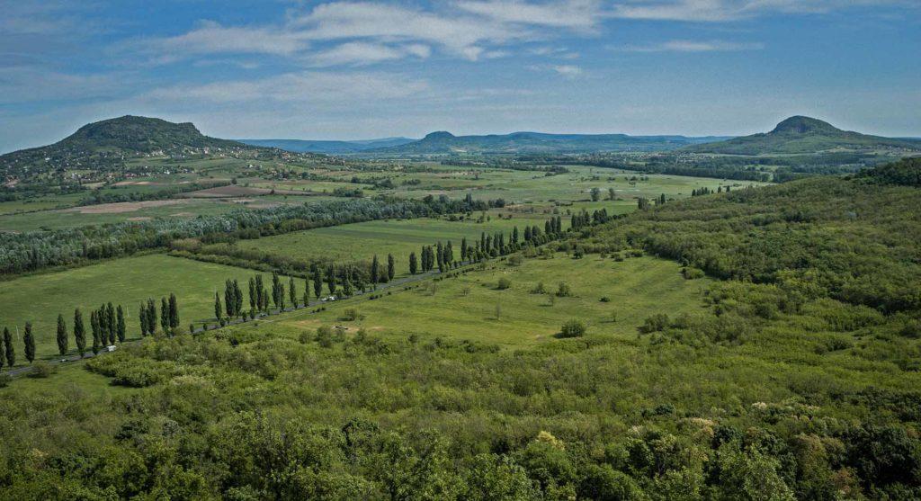 Weinverkostung mit Auswahl aus Ungarns besten vulkanischen Weinen / Foto: pixabay / akos147