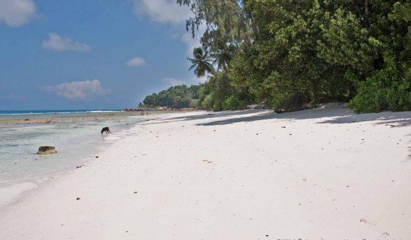 La Digue. Träumstrände auf den Seychellen / Foto: WeltReisender.net / Ingo Paszkowsky