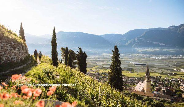 Südtirol erwartet Gäste / Foto: IDM Südtirol/Benjamin Pfitscher